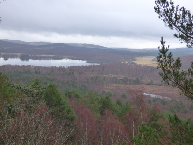 Loch Kinord and Parkin's Moss from Cnoc Dubh