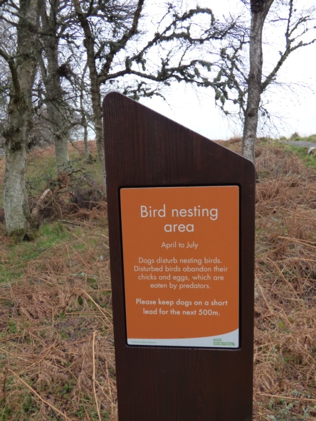 Breeding bird sign
