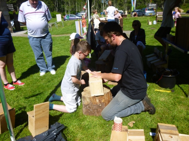 Making bird boxes- spread that biodiversity!
