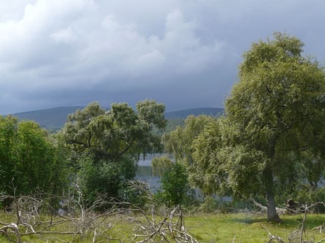 It's going to be wet soon! A thundery shower moving in over Loch kinord