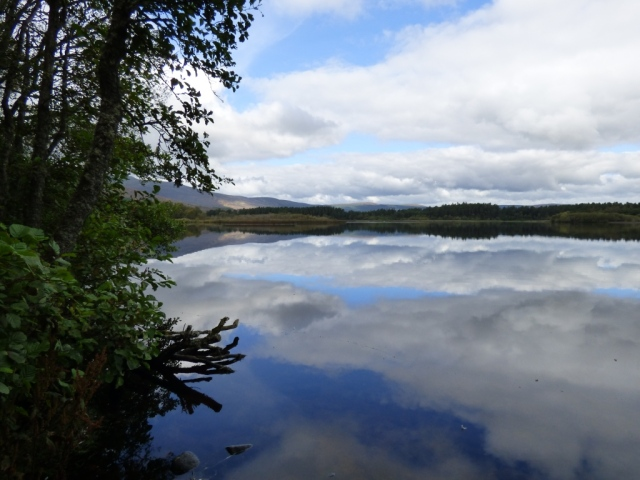 Loch Davan reflections
