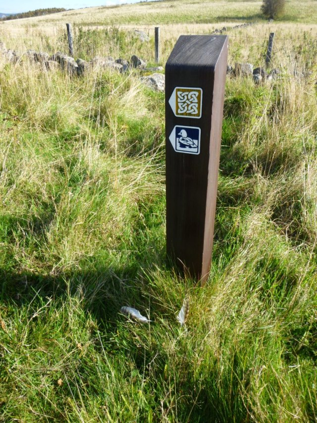Who's been perching on our waymarkers?