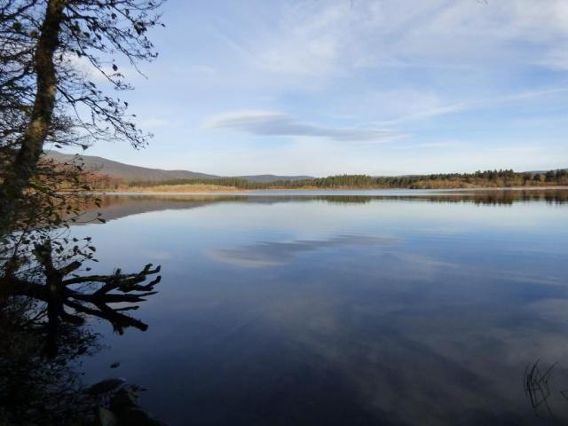 A still morning on Loch Davan