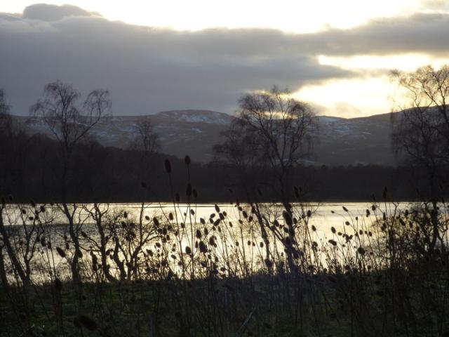 Sunset over Loch Kinord with teasels in foreground