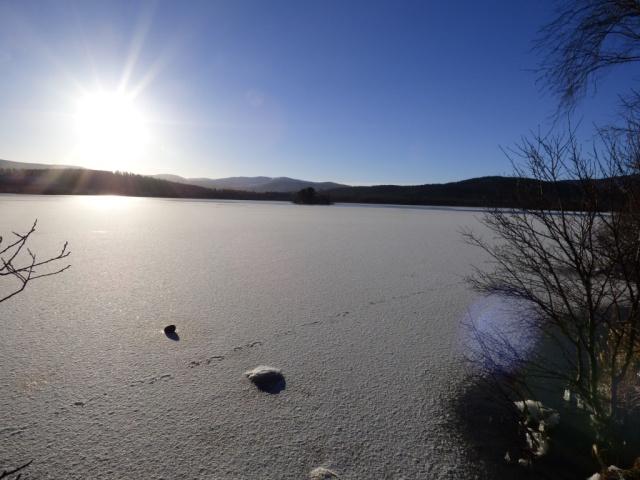 Frozen Loch Kinord