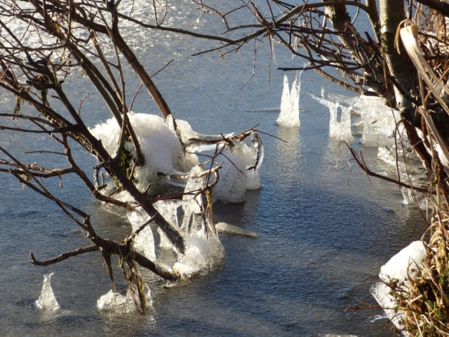 Upside -down icicles at the edge of the loch