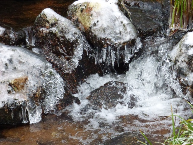 Even the rocks on the stream are icy