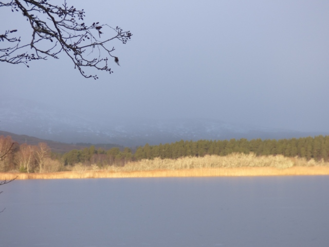 It's snowing over the hills behind Loch Davan but...