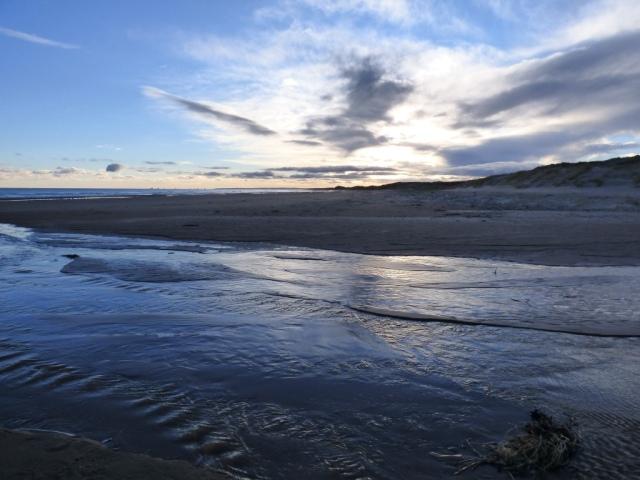 Forvie beach