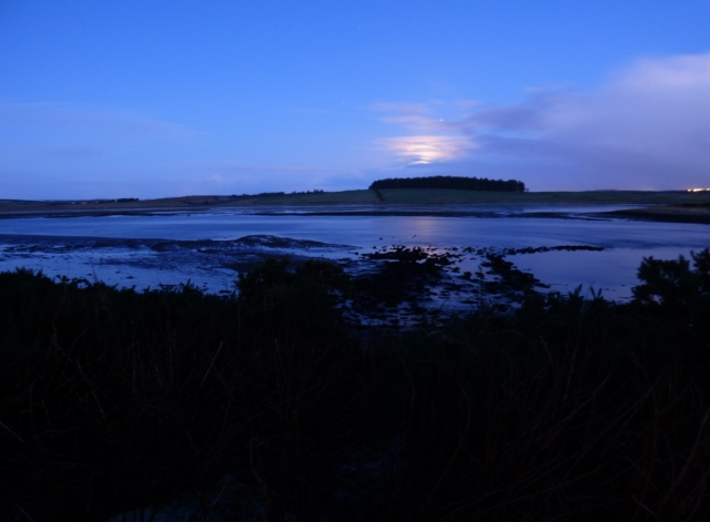 Moonset over the Ythan Estuary