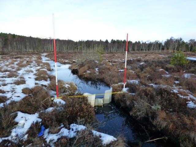 Parkin's Moss dam
