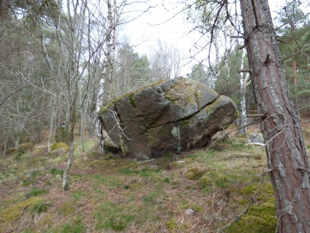 """Glacial erratic, yes. """"Earl Davy's Stone""""...well, maybe!"""