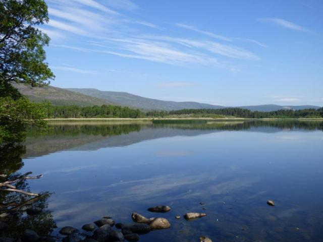 Hot, still and idyllic- Loch Davan