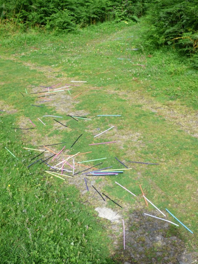 Why, oh why.....straws scattered up 100 yards of path.