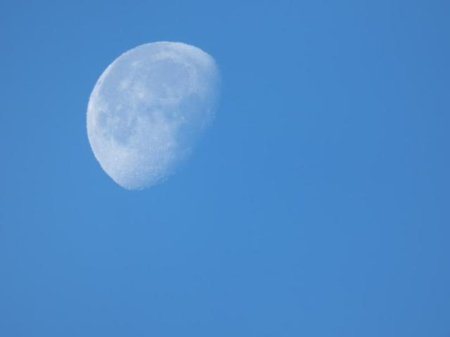 The moon has been easily visible during the day