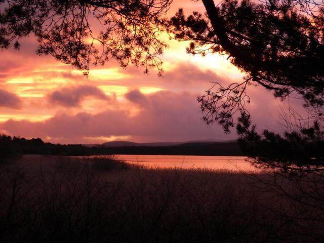 Sunrise Loch Davan
