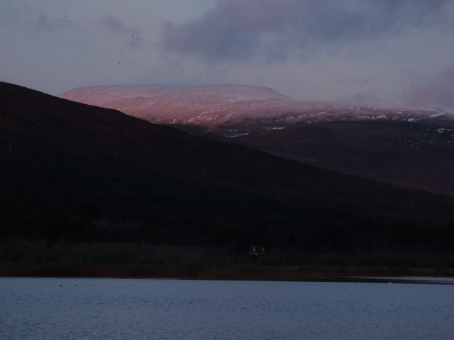 The snow blushes pink in the morning sun