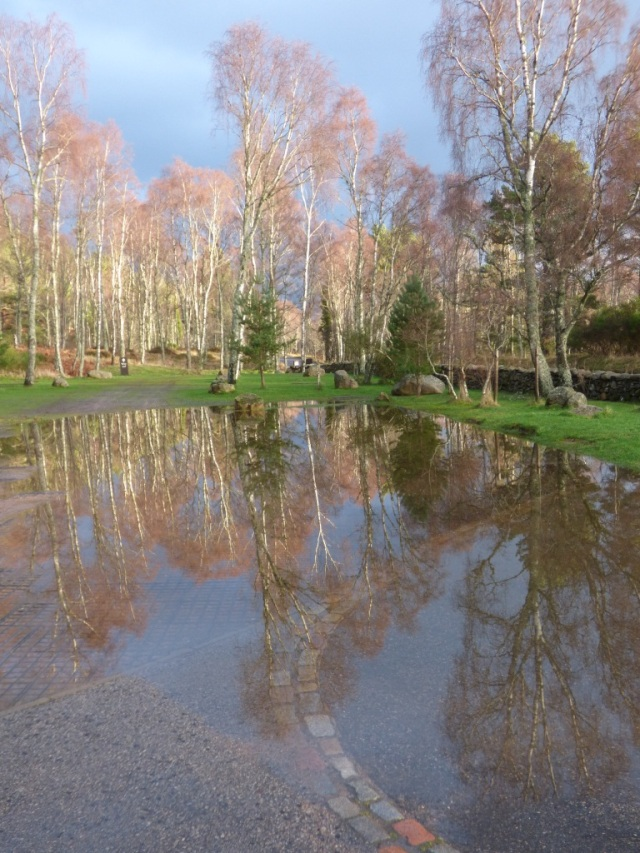 Reflections of the car park....it's flooded too.