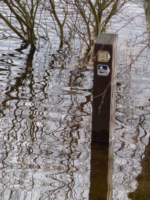 You don't need the waymarker to tell you it's flooded...