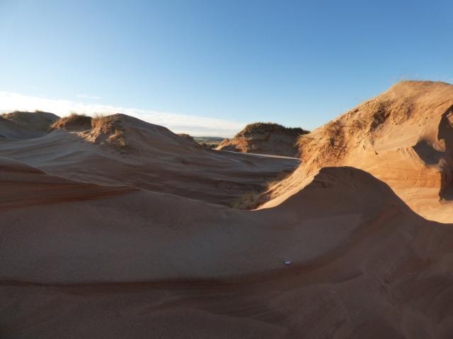 Forvie dunes