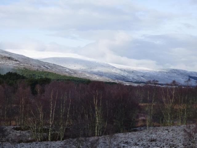 Snowy Morven-again!
