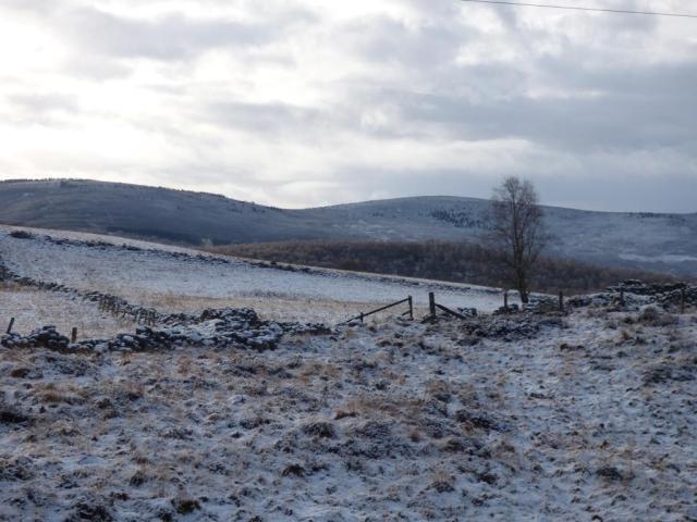 Looking south across Old Kinord fields