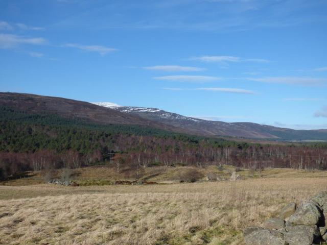 Looking across the reserve toward Morven