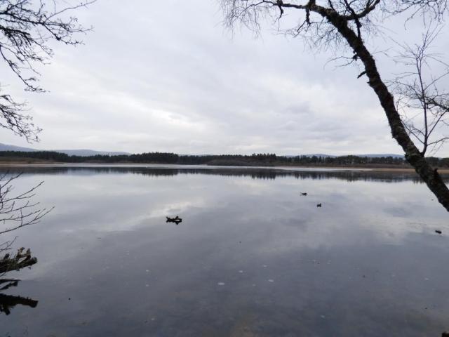 Loch Davan was half frozen early in the week