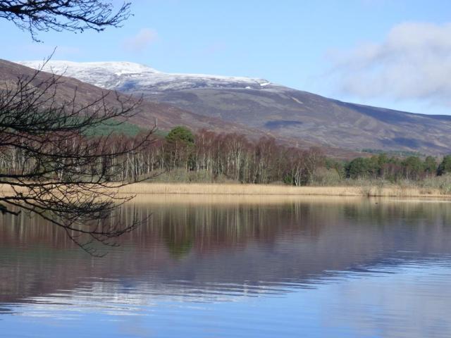 Fresh snow on Morven, Thursday