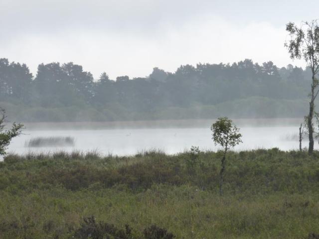 Misty Loch Davan