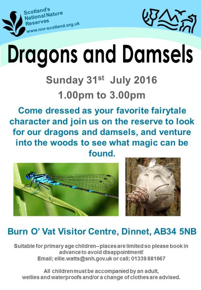 Poster - dragons and damsels