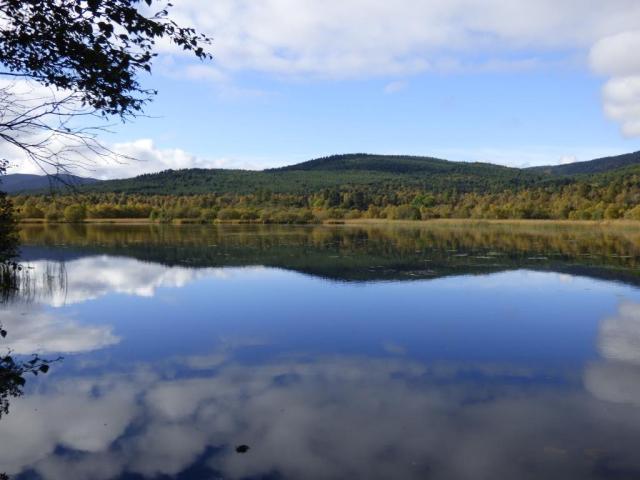 Kinord, reflecting Cnoc Dubh