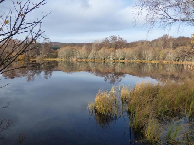 Loch Kinord, flat calm