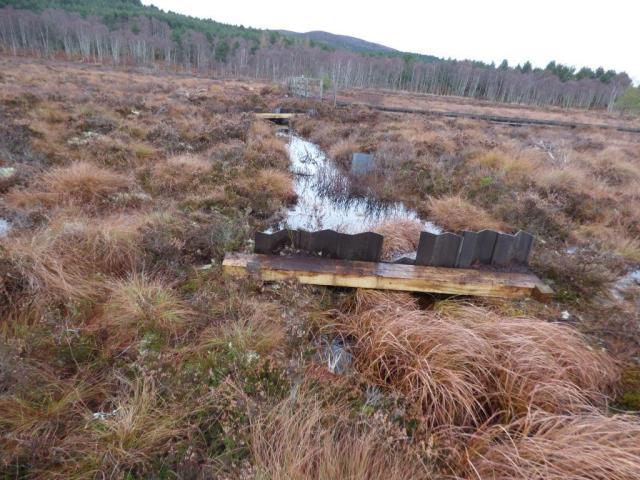 Replacement dam. Parkin's Moss