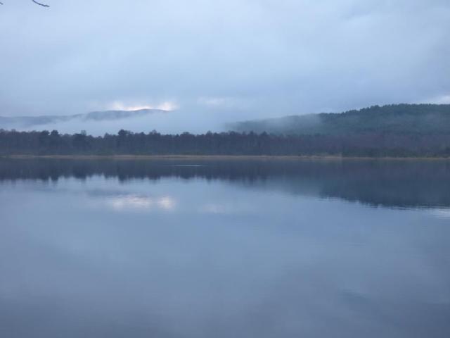 Still damp days