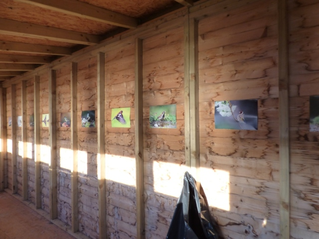 Posters in the Waulkmill bird hide