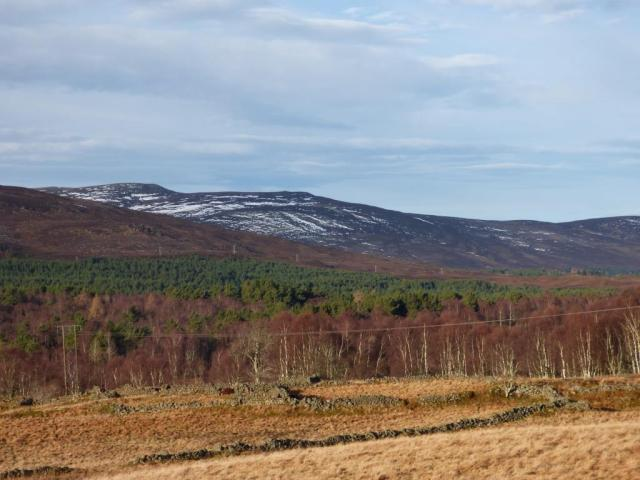 Hardly any snow on Morven on Monday, in spite of being a lot on Saturday