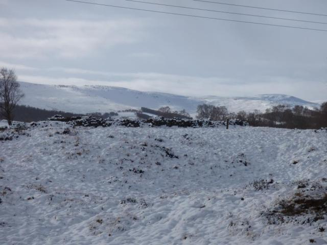 A snow view across the reserve